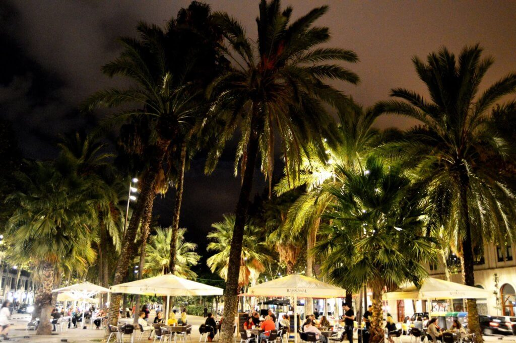 Palm trees iluminated at night in the Rambla del Raval